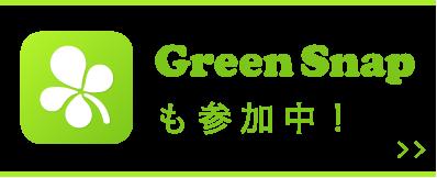 GreenSnapも参加中!